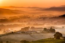 Tuscan Farms During Sunrise, I...