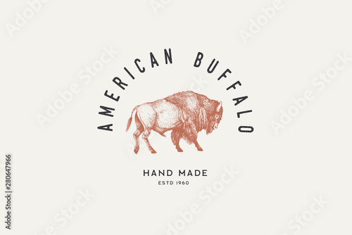 Fotografia  Hand drawing of American bison in retro engraving style
