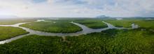 Borneo Wetlands
