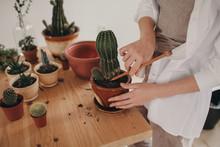 Woman Uprooting Cactus
