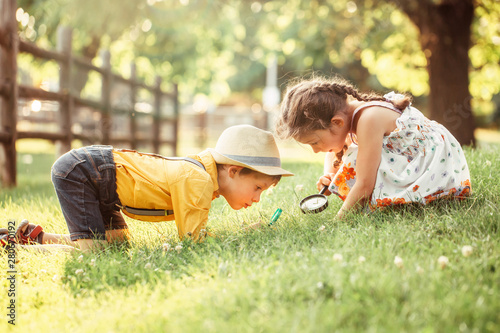 Fotomural Cute adorable Caucasian girl and boy looking at plants grass in park through magnifying glass