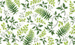 Beautiful pattern seamless of fern, palm, natural branches, green leaves, herbs, hand drawn watercolor style fresh rustic eco. Vector decorative cute elegant illustration isolated white background