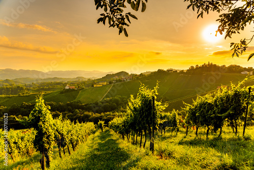 View at South Styria Vineyard fields in sunset sun in summer. Tourist destination.