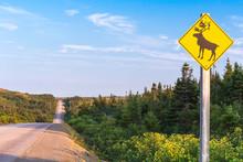 Moose Crossing Road Sign, Newfoundland, Canada