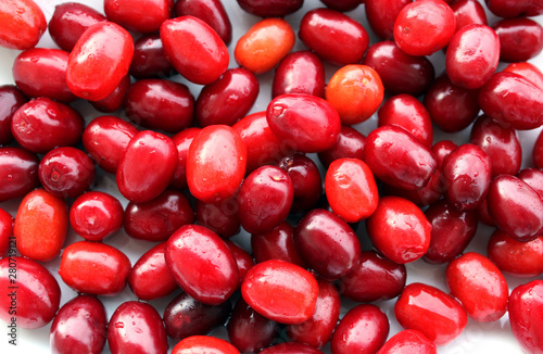Valokuva  Cornelian cherry fruits, sweet and sour taste