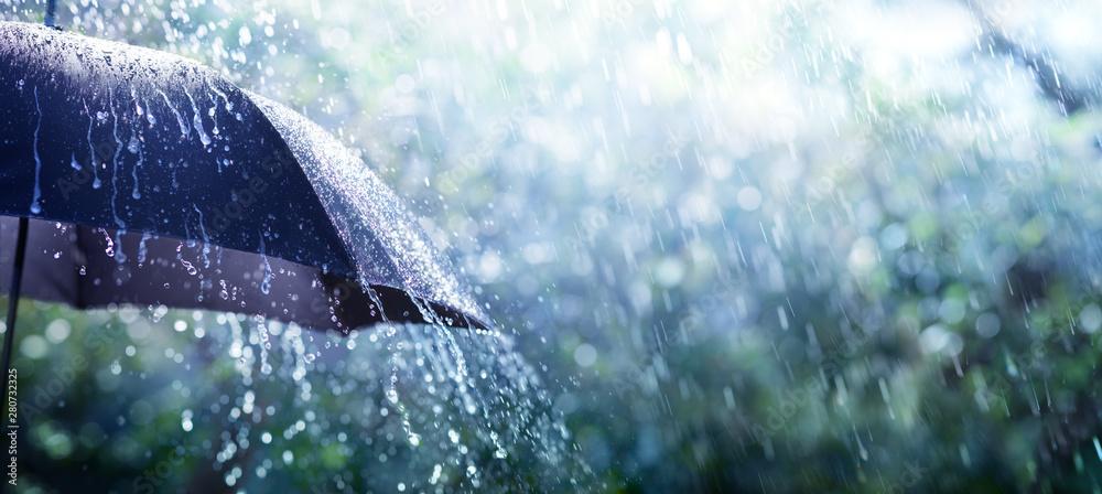 Fototapety, obrazy: Rain On Umbrella - Weather Concept