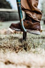 Shovel In The Grass