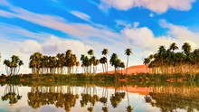 Palm Trees Near Oasis In Afric...
