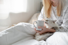 Good Morning Concept Blonde Girl With The Cat And Coffee Cup Hygge Lagom Concept. Horizontal Copyspace