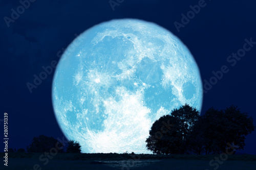 Full Buck Moon back silhouette trees in the field Canvas Print