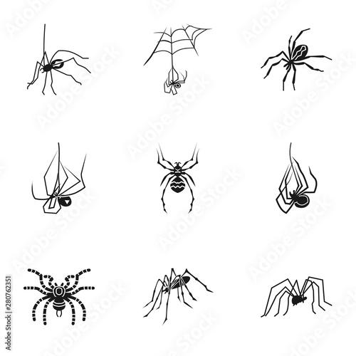 Horror spider icon set Wallpaper Mural