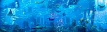 Under The Sea. Generated Illus...