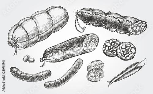 Fototapeta Ink hand drawn set of various sausages, ham, salami. Food elements collection for menu or signboard design. Vector illustration. obraz