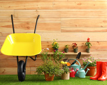 Wheelbarrow With Gardening Too...