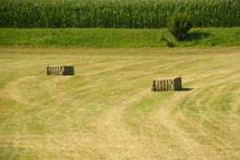 Hay Cuboids On A Meadow In Front Of A Green Corn Field As A Rural Backdrop, Hay Cuboids In Bavaria