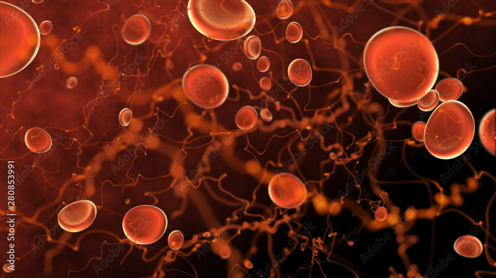 Fototapeta Microscope red blood cells and virus Bacteria, infection 3d rendering, health care, medical and science concept. particle in blood, human body science biology