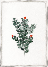 Watercolor Gift Card With Stylized Branches With Leaves And Orange Flowers In  A Black And Silver Frame. Made By Line And Wash Technique On A White Background