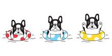 Dog Vector French Bulldog Icon Swimming Ring Pool Cartoon Character Symbol Illustration Doodle Design