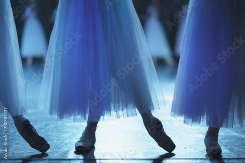 The legs of the corps de ballet dancers in a dance position in the rehearsal hal Fototapet