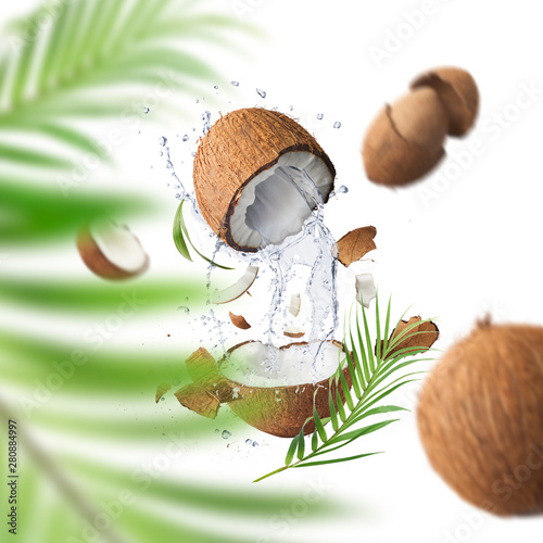Foto auf AluDibond Palms Flying in air fresh ripe whole and cracked coconut with palm leave