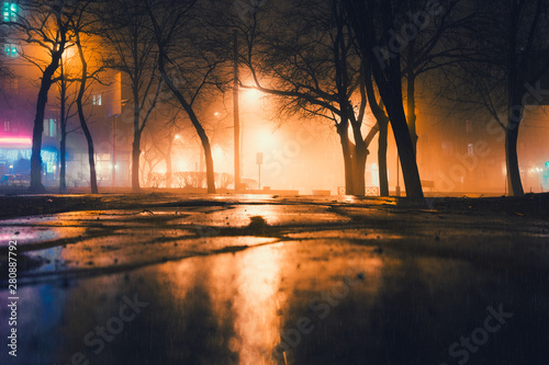 Foto op Plexiglas Herfst Foggy and rainy night in a city park