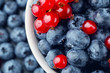 canvas print picture - Fresh selected blueberries and red currant in bowl, close-up