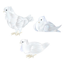 Ornamental White Doves Cute Sm...
