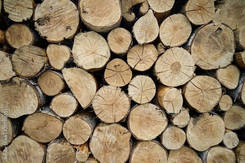 Fotobehang Brandhout textuur Holzpolter, gestapelt, Holz, Wald, Harz, Natur, Hintergrundbild