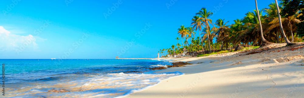 Fototapeta Tropical beach in Dominican Republic. Coconut Palm trees on white sandy beach.