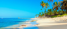 Tropical Beach In Dominican Re...