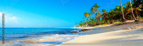 Fotografie, Tablou Tropical beach in Dominican Republic