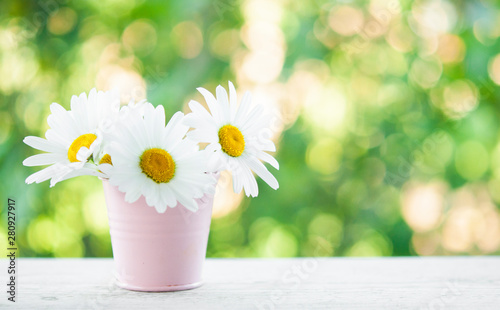 Bouquet of daisy-chamomile flowers in pot