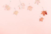 Autumn Creative Composition. Beautiful Dried Leaves On Pastel Pink Background. Fall Concept. Autumn Background. Flat Lay, Top View, Copy Space