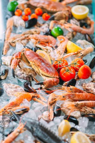 Fotobehang Schaaldieren Seafood on ice. Crabs, sturgeon, shellfish, shrimp, Rapana, Dorado, on white ice.
