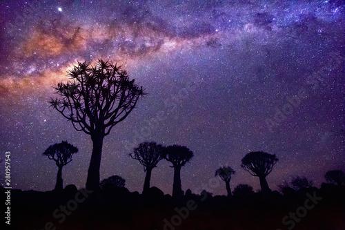 Foto auf AluDibond Aubergine lila Quiver tree forest in Namibia