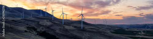 Obraz Beautiful Panoramic Landscape View of Wind Turbines on a Windy Hill during a colorful sunrise. Taken in Washington State, United States of America. - fototapety do salonu