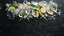 Oyster With Lemon On Ice. Seaf...