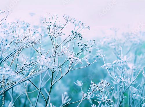 delicate openwork flowers i...