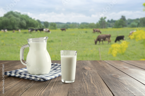 Fototapeta Fresh milk in glass on dark wooden table and blurred landscape with cow on meadow. Healthy eating. Rustic style. obraz