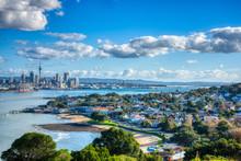 Auckland City Sunny