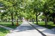 Park w Zdunach