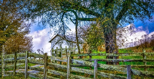Fotografia, Obraz Picturesque autumn landscape in west virginia