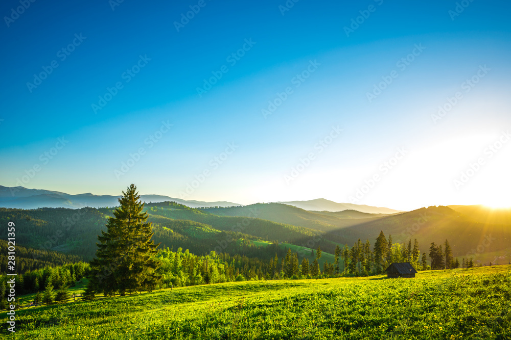 Fototapety, obrazy: Houses on the background of the beautiful Carpathian forests.