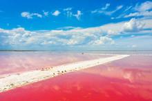 Salt Bank In Pink Lake Under B...