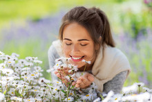Gardening And People Concept - Close Up Of Happy Young Woman Smelling Chamomile Flowers At Summer Garden