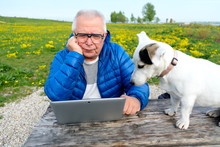 Old Age, Technology, Senior People, Lifestyle, Distance Learning. Senior Man 70-75 Years Old Sitting In Summer Park With Dog Jack Russell Terrier And Uses Laptop Computer.