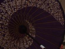 Japanese Umbrella - 和傘