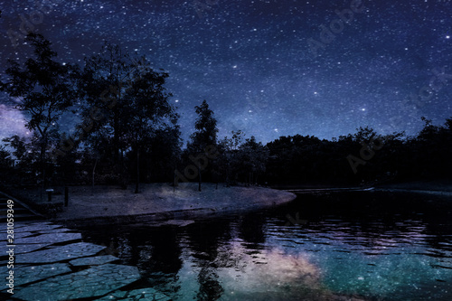 Foto auf Leinwand Schwarz Beautiful abstract texture colorful black and white flowers and tree plant forest landscape on the darkness and aurora Polaris and the stars on the sky milky way galaxy background and wallpaper