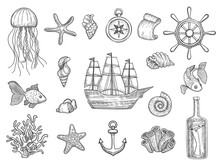 Marine Symbols. Fish Ship Shells Boats Ocean Symbols Sailboat Vector Nautical Collection. Illustration Of Boat, Marine Shell And Anchor, Fish And Starfish
