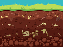 Archeology, Historic Artifacts Under Ground Illustration. Dinosaurs And Prehistoric Animals Bones, Fossil In Soil Layers Flat Vector Drawing. History, Paleontology Science, Archeological Excavation